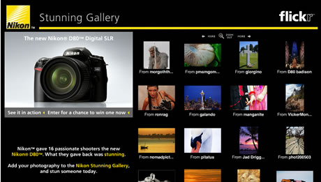 Nikon Stunning Gallery
